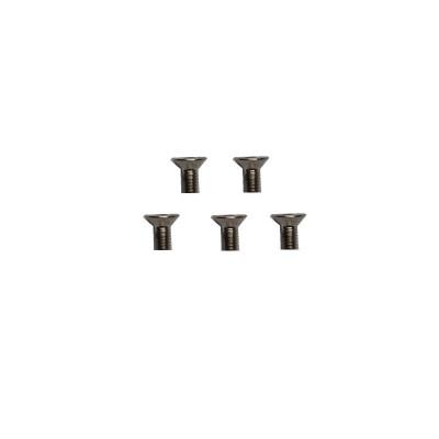 XL70A25-1 Silver Flat screw M3*6